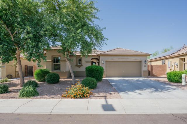 18161 W Purdue Avenue, Waddell, AZ 85355 (MLS #5936912) :: The Daniel Montez Real Estate Group