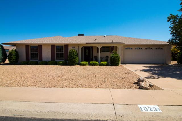 10231 W Twin Oaks Drive, Sun City, AZ 85351 (MLS #5936916) :: CC & Co. Real Estate Team
