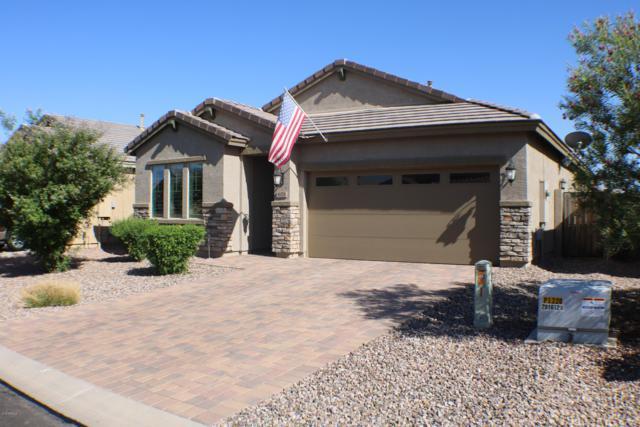 671 E Blossom Road, San Tan Valley, AZ 85143 (MLS #5936937) :: Revelation Real Estate