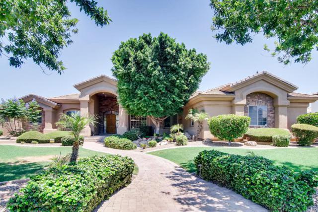 2510 E Minton Street, Mesa, AZ 85213 (MLS #5936987) :: Occasio Realty