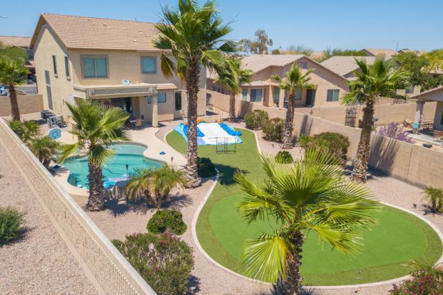 44377 W Juniper Avenue, Maricopa, AZ 85138 (MLS #5937014) :: CANAM Realty Group
