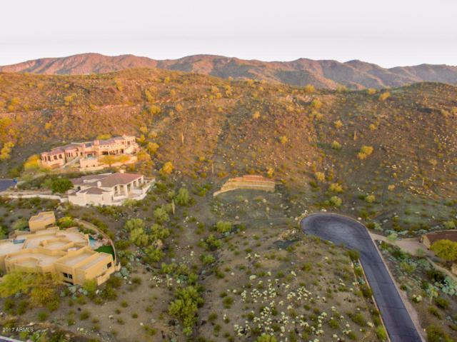 14012 S 19TH Street, Phoenix, AZ 85048 (MLS #5937032) :: Conway Real Estate