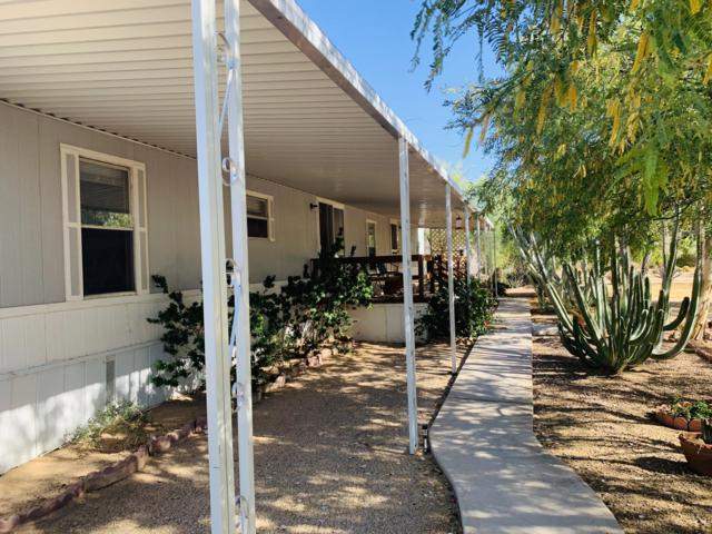 3655 N Thistle Drive, Florence, AZ 85132 (MLS #5937033) :: The Pete Dijkstra Team