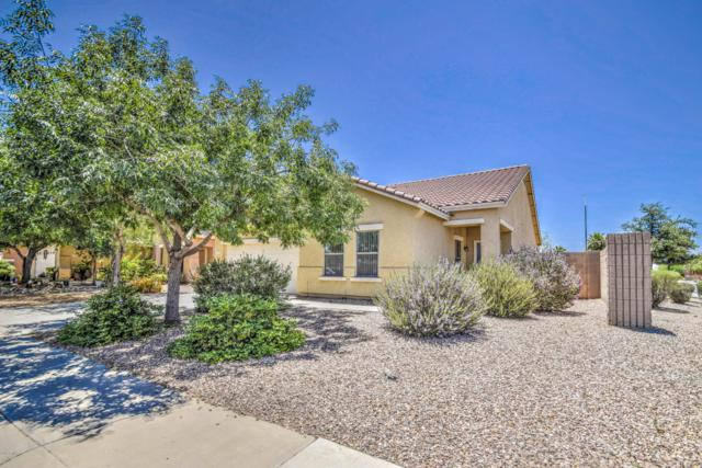 1821 N Greenway Lane, Casa Grande, AZ 85122 (MLS #5937065) :: The Everest Team at My Home Group