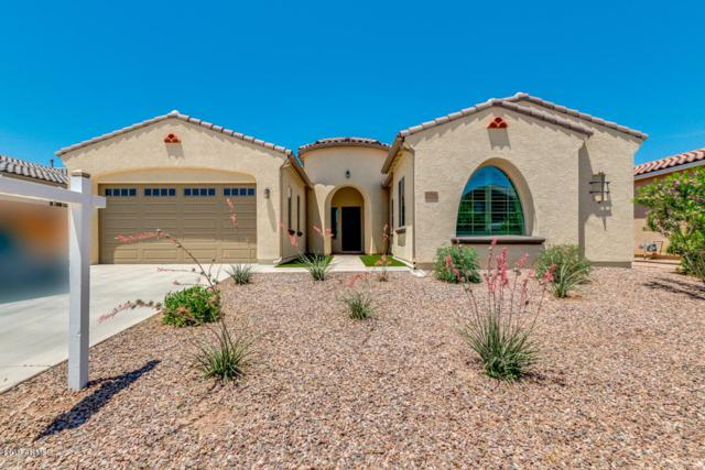 19560 E Apricot Lane, Queen Creek, AZ 85142 (MLS #5937091) :: Conway Real Estate
