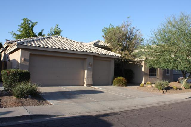 2708 E Amberwood Drive, Phoenix, AZ 85048 (MLS #5937207) :: Revelation Real Estate