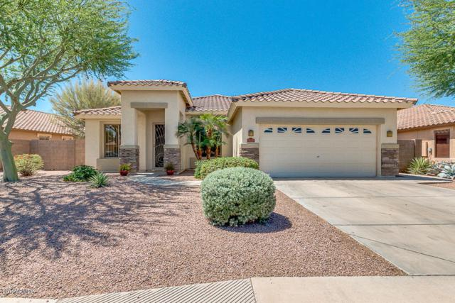 4263 E Torrey Pines Lane, Chandler, AZ 85249 (MLS #5937208) :: Revelation Real Estate