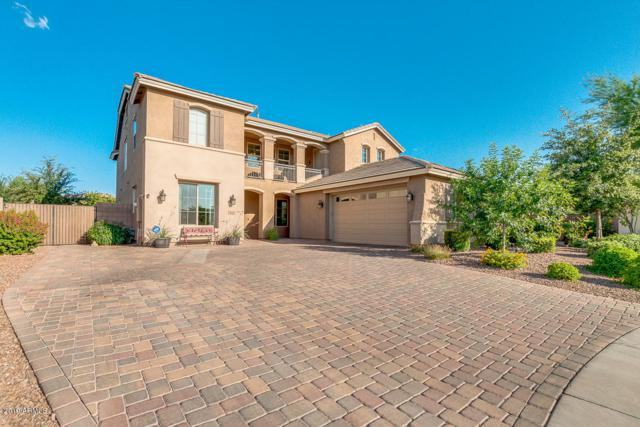 4141 S Beverly Court, Chandler, AZ 85248 (MLS #5937259) :: Brett Tanner Home Selling Team