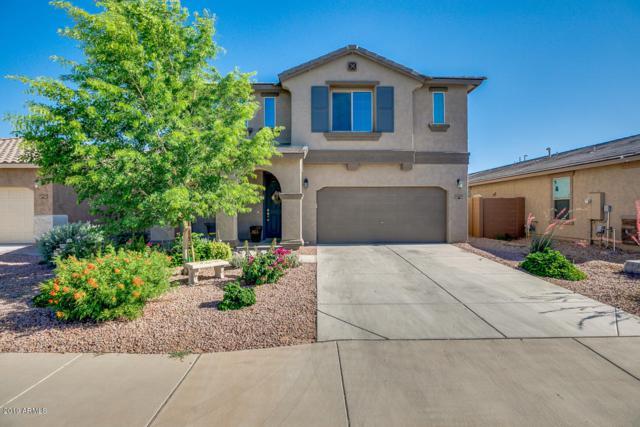 40803 W Wade Drive, Maricopa, AZ 85138 (MLS #5937322) :: Revelation Real Estate