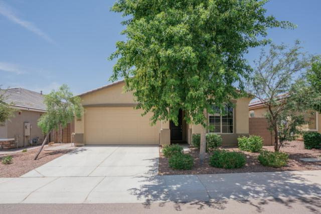 1838 N 212TH Lane, Buckeye, AZ 85396 (MLS #5937524) :: The Pete Dijkstra Team