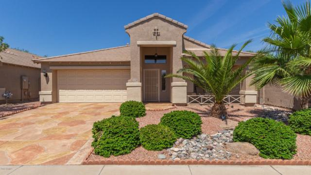 22230 N Dietz Drive, Maricopa, AZ 85138 (MLS #5937538) :: The Pete Dijkstra Team