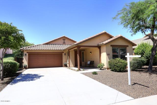 12795 W Milton Drive, Peoria, AZ 85383 (MLS #5937541) :: Riddle Realty
