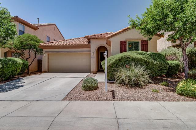 42928 N 43RD Drive, New River, AZ 85087 (MLS #5937560) :: The Pete Dijkstra Team