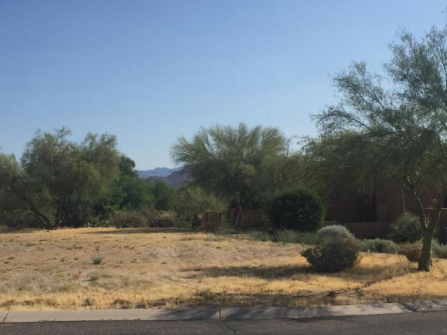 27931 N Montana Drive, Rio Verde, AZ 85263 (MLS #5937567) :: CC & Co. Real Estate Team