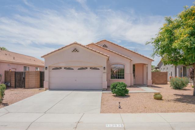 12625 W Earll Drive, Avondale, AZ 85392 (MLS #5937575) :: The Daniel Montez Real Estate Group