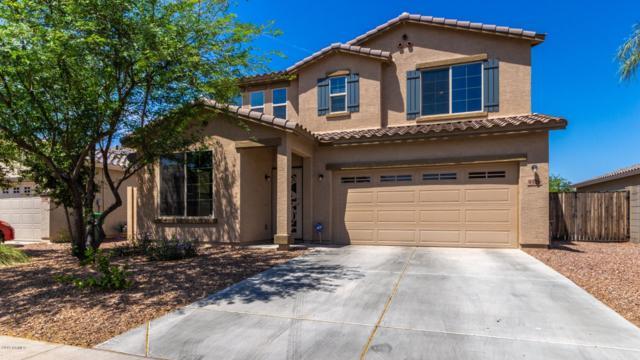 9326 N 182ND Lane, Waddell, AZ 85355 (MLS #5937606) :: Occasio Realty