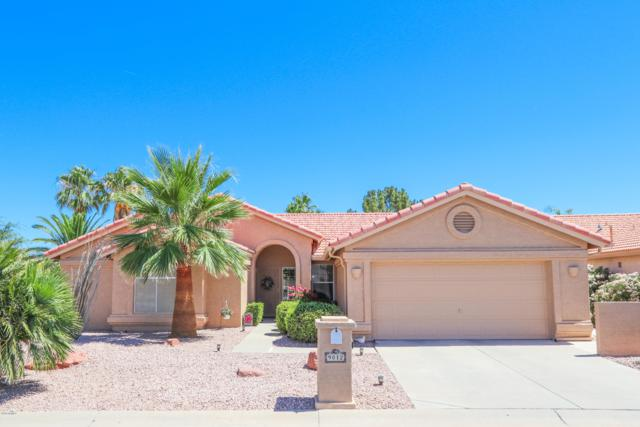 9012 E Coopers Hawk Drive, Sun Lakes, AZ 85248 (MLS #5937608) :: Yost Realty Group at RE/MAX Casa Grande