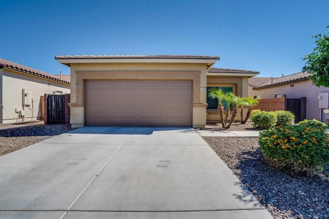205 W Dragon Tree Avenue, San Tan Valley, AZ 85140 (MLS #5937681) :: The Ford Team