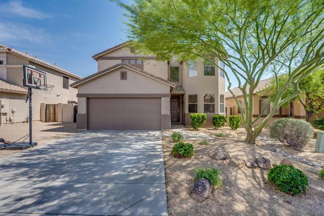 6785 W Tether Trail, Peoria, AZ 85383 (MLS #5937707) :: The Laughton Team