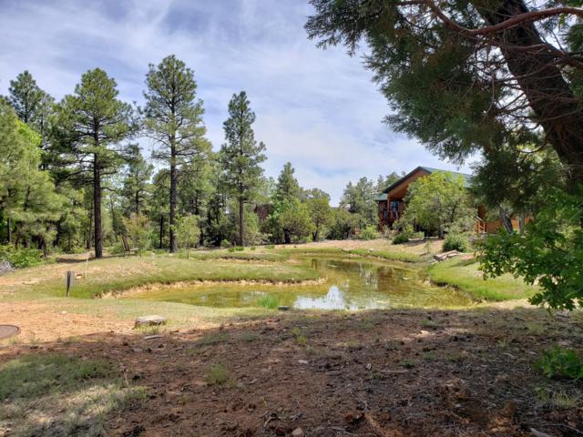 4441 W Shaggybark Road, Show Low, AZ 85901 (MLS #5937729) :: Brett Tanner Home Selling Team