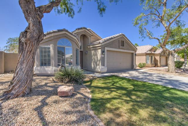 1605 W Geronimo Street, Chandler, AZ 85224 (MLS #5937756) :: The C4 Group