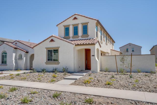4908 S Turbine, Mesa, AZ 85212 (MLS #5937789) :: Revelation Real Estate