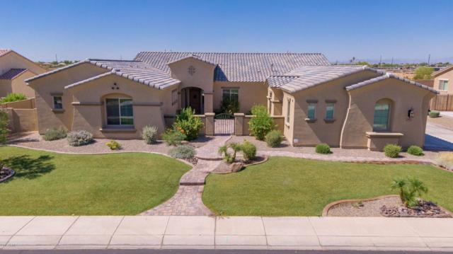 3064 E Blackhawk Drive, Gilbert, AZ 85298 (MLS #5937824) :: The Pete Dijkstra Team
