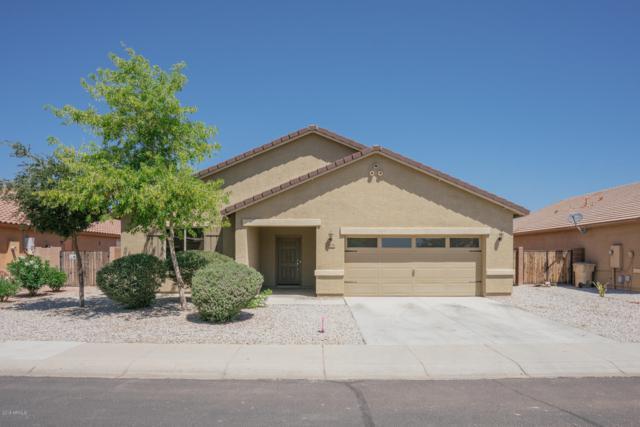 25236 W Maldonado Drive, Buckeye, AZ 85326 (MLS #5937848) :: Riddle Realty