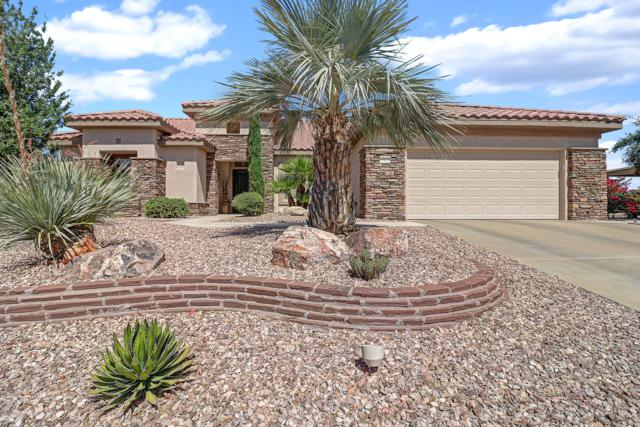 17421 N Potomac Lane, Surprise, AZ 85374 (MLS #5937872) :: Kepple Real Estate Group
