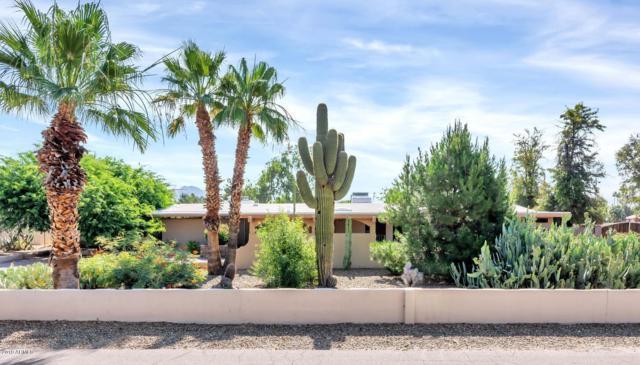13439 N 79TH Street, Scottsdale, AZ 85260 (MLS #5937902) :: CC & Co. Real Estate Team