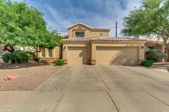 4521 E Mountain Sky Avenue, Phoenix, AZ 85044 (MLS #5937966) :: Occasio Realty