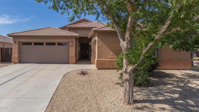884 W Desert Valley Drive, San Tan Valley, AZ 85143 (MLS #5937971) :: Revelation Real Estate