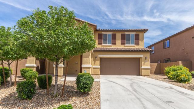 12172 W Overlin Lane, Avondale, AZ 85323 (MLS #5938008) :: The Daniel Montez Real Estate Group
