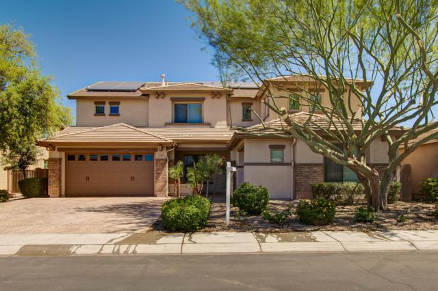 2436 E Narrowleaf Drive, Gilbert, AZ 85298 (MLS #5938011) :: Team Wilson Real Estate