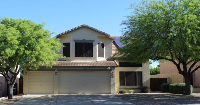 908 E Mohawk Drive, Phoenix, AZ 85024 (MLS #5938032) :: Occasio Realty
