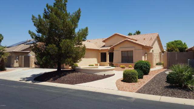 14696 W Mulberry Drive, Goodyear, AZ 85395 (MLS #5938040) :: Kortright Group - West USA Realty