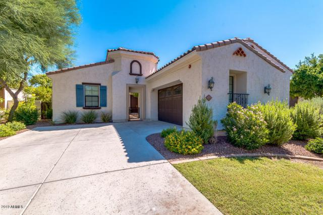 3537 N Hooper Street, Buckeye, AZ 85396 (MLS #5938098) :: The W Group