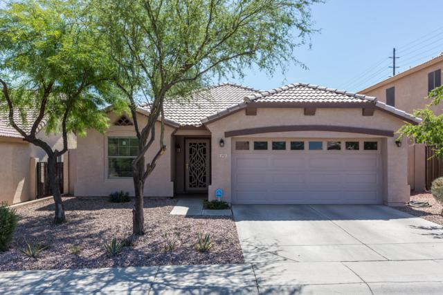 5921 S 16TH Drive, Phoenix, AZ 85041 (MLS #5938101) :: Revelation Real Estate