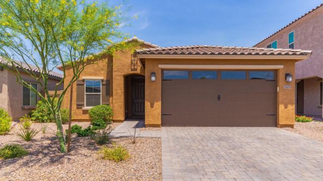 1806 W Bonanza Drive, Phoenix, AZ 85085 (MLS #5938138) :: The Laughton Team