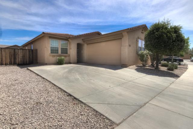 17718 W Tonto Street, Goodyear, AZ 85338 (MLS #5938154) :: Occasio Realty