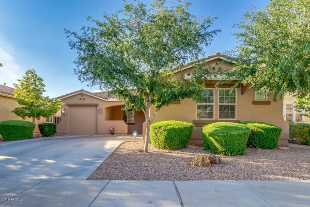 42460 W Cheyenne Drive, Maricopa, AZ 85138 (MLS #5938167) :: Revelation Real Estate