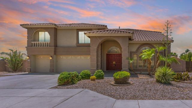 5602 N 131ST Drive, Litchfield Park, AZ 85340 (MLS #5938196) :: CC & Co. Real Estate Team