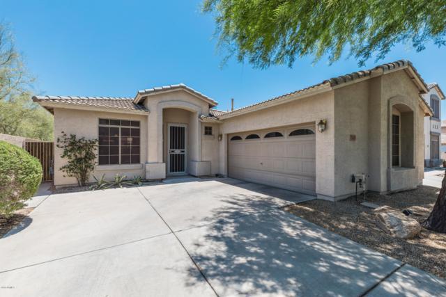 7333 E Mills Street, Mesa, AZ 85207 (MLS #5938203) :: Revelation Real Estate