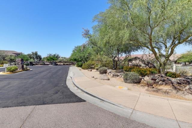 4244 E Desert Sky Court, Cave Creek, AZ 85331 (MLS #5938218) :: The Daniel Montez Real Estate Group