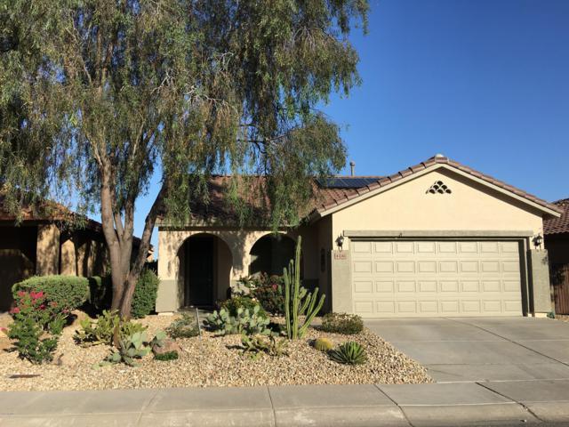 43241 N Vista Hills Drive, Anthem, AZ 85086 (MLS #5938260) :: The Pete Dijkstra Team
