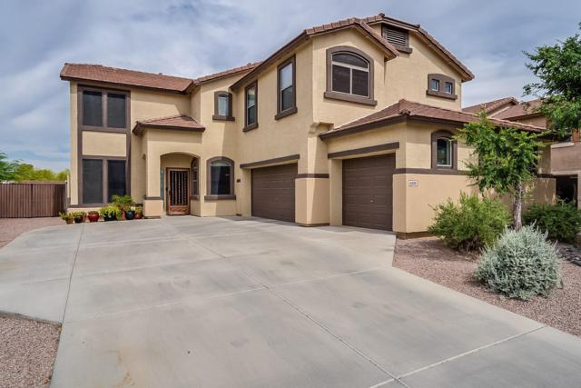 6006 N 124TH Drive, Litchfield Park, AZ 85340 (MLS #5938264) :: The Pete Dijkstra Team