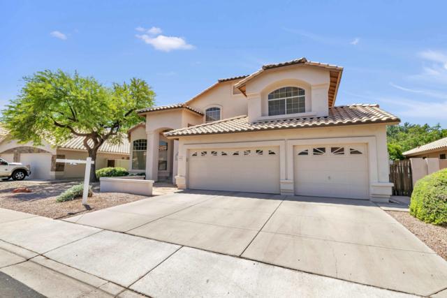4697 W Carla Vista Drive, Chandler, AZ 85226 (MLS #5938293) :: Revelation Real Estate