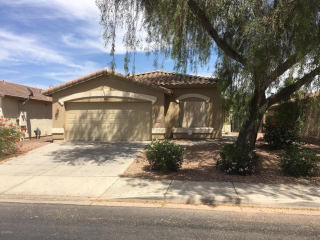 22511 N Bishop Drive, Maricopa, AZ 85138 (MLS #5938313) :: Revelation Real Estate