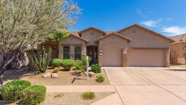 3212 W Caravaggio Lane, Phoenix, AZ 85086 (MLS #5938316) :: Revelation Real Estate