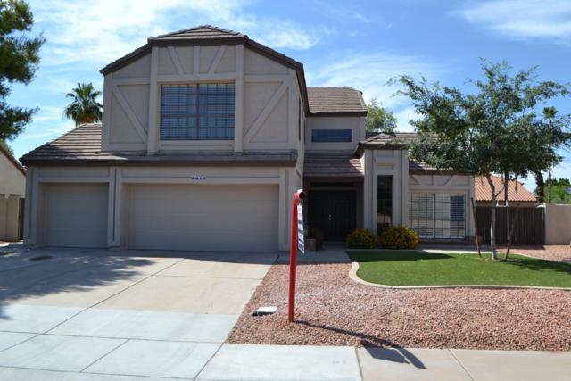 2614 W Calle Del Norte, Chandler, AZ 85224 (MLS #5938395) :: Revelation Real Estate